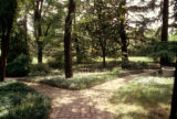 Jardins de Dumbarton Oaks, Washington, 1921-1941