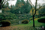 Nitobe Memorial Garden, University of British Columbia Botanical Garden and Centre for Plant Research,