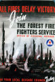 All fires delay victory : join the Forest Fire Fighters Service